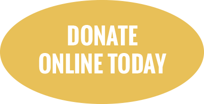 Donate online today